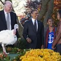 President Barack Obama, accompanied by daughters Sasha and Malia, laughs at a loud gobble from the t...