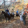 Horses and riders are common sights during a Goat Trail hike.