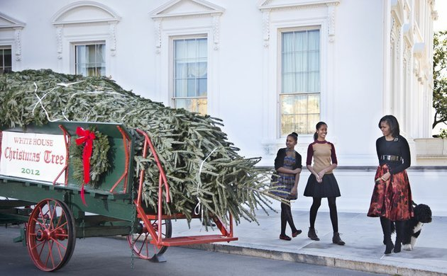 first-lady-michelle-obama-with-daughters-sasha-left-and-malia-welcome-the-arrival-of-the-official-white-house-christmas-tree-a-19-foot-fraser-fir-from-jefferson-nc-at-the-north-portico-of-the-white-house-in-washington-friday-nov-23-2012