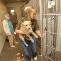 Shonna Harvey, right, former director of the Washington County Animal Shelter, speaks Sept. 19 with ...