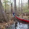 Low water has troubled swamp paddlers this year just as it has hampered paddling on upland streams. ...