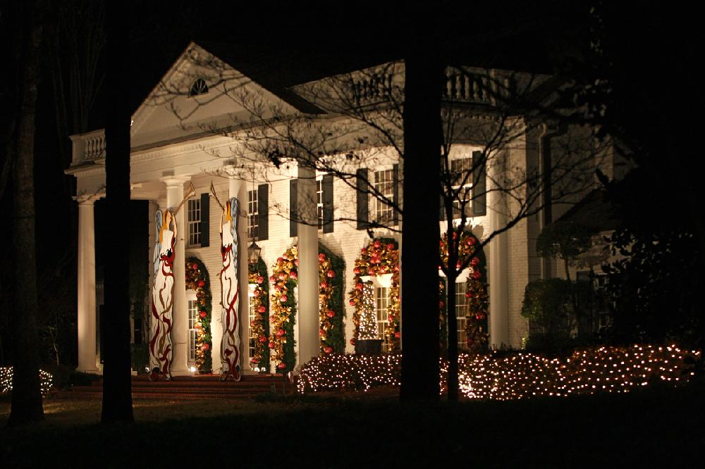 Razorback Christmas Lights