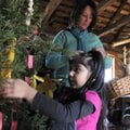 Isabelle Duran, 4, pre-K student with Springdale Public Schools, hangs a handmade ornament on a Chri...