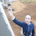 Mady Gray, 12, reaches up as far as she can Saturday while painting the trim on the storage shed nex...