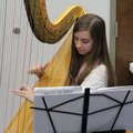 Emily Carpenter, a Central Junior High School student, performed Oct. 30 on harp at a school board l...