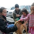 Robert Richardson, center, with Rogers Animal Services, holds a leash Friday as Carli Rudder, 10, le...
