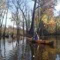 Kirsten Bartlow of Little Rock enjoys the beauty of the swamp on Bayou De View near Brinkley, Ark.  ...