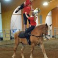 Top to bottom:  Malu Foley, Caroline Shubert, and Regina Yancey with the American Vaulting Associati...
