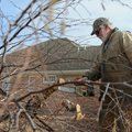 Mike Burton with Burton Lawn Services cuts off sections of branches Wednesday from a River Birch at ...