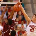 Arkansas sophomore Hunter Mickelson (21) blocks a shot during Arkansas' win over Alabama A&M at Veri...