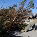 Bryce Napier, Youth Strategies program coordinator, pulls a juniper bush aside Friday after using a ...