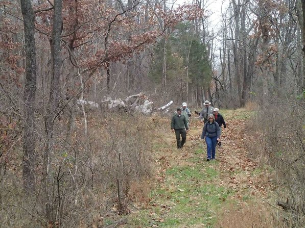 There's acres of nature to explore during a hike at Pea Ridge National Military Park.