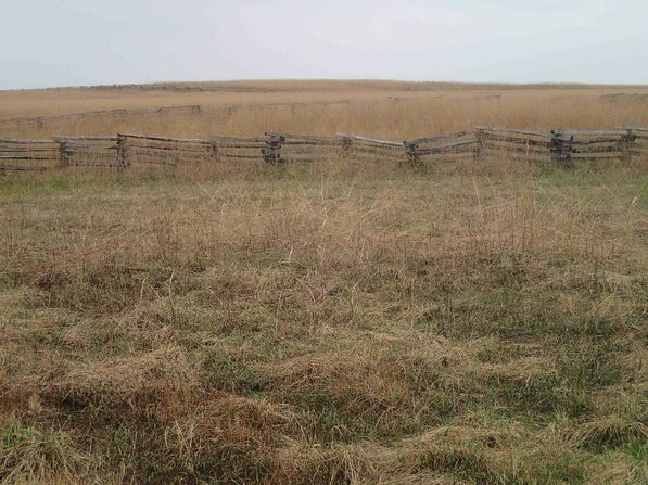 Some open areas of the battlefield that hikers see resemble prairie more than the Ozarks.