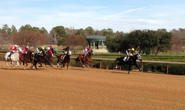 horses-sprint-from-the-gate-in-the-first-race-of-2013-at-oaklawn-park-robby-albarado-won-the-race-aboard-congenial