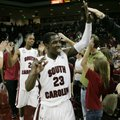 South Carolina's Bruce Ellington made 6 of his 8 shot attempts in the Gamecocks' 75-54 victory over ...