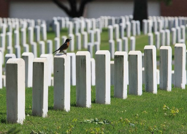 a-robin-sits-on-the-top-of-a-headstone-monday-afternoon-at-little-rock-national-cemetery