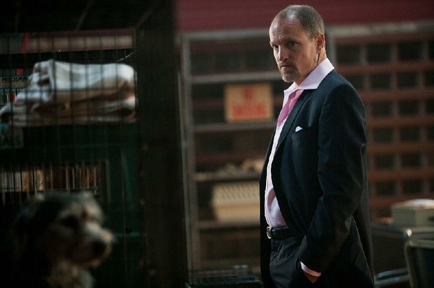 charlie-woody-harrelson-is-a-crime-boss-pushed-to-the-edge-when-his-beloved-pet-is-dognapped-in-martin-mcdonaghs-seven-psychopaths