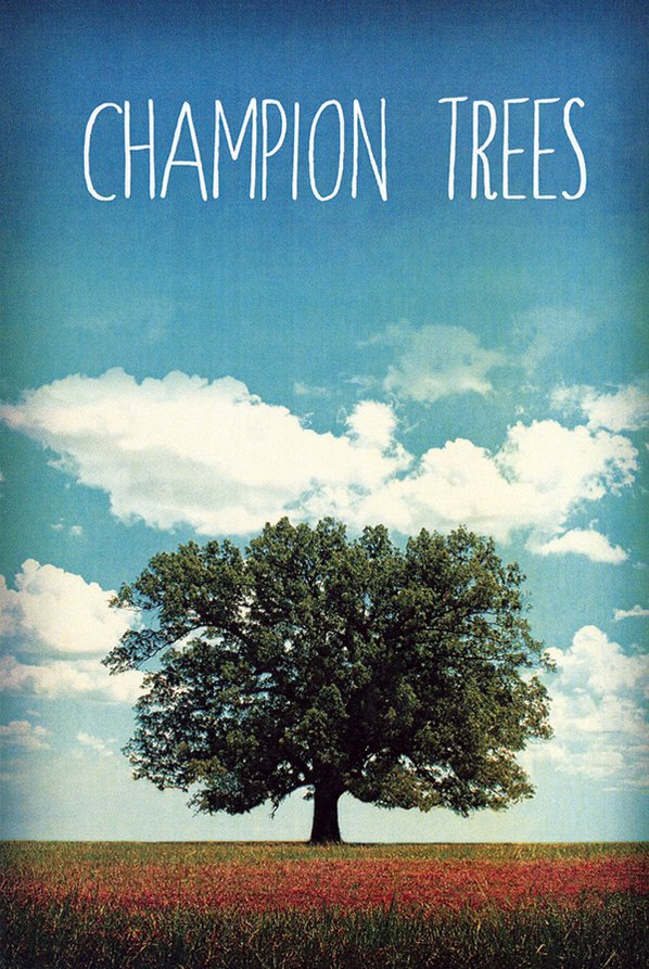 """Arkansas Champion Trees: An Artist's ..."