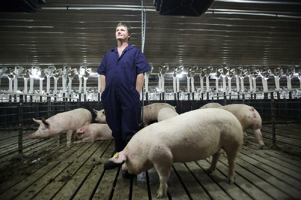 Hog Farm Pictures Hog-farm Owners Offer Tour to