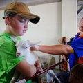 Owen Nielsen, 12, of Fayetteville, reaches in to pet a kid held by Eli Elderton, 9, Tuesday morning ...