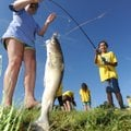 Carrina Ibarra, 10, right, laughs Wednesday while reeling in a catfish with the help of volunteer Ma...