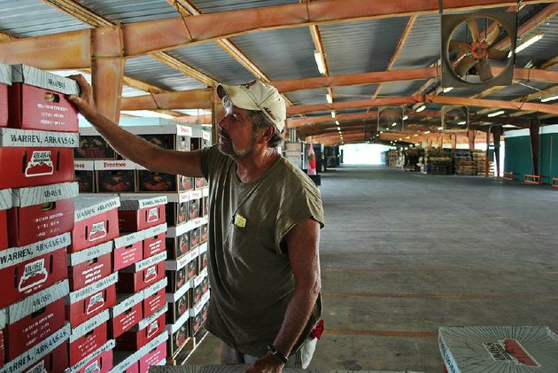 terry-donnelly-examines-boxes-packed-with-deepwoods-farms-tomatoes-at-a-quiet-warren-tomato-market-last-week-donnelly-said-farmers-once-crowded-the-market-to-sell-tomatoes