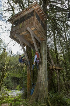Pete Nelson (right) and his son, Charlie, finish up a treehouse on Animal Planet's Treehouse Masters. The series airs at 9 p.m. Friday.