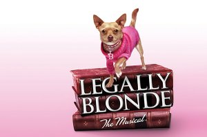 Legally Blonde opens Friday at The Public Theatre