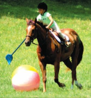 Alyx Swope-Bell, riding sugar, takes a swing at the giant beach ball using a broom as a polo mallet. All eight riders of the Legends class took turns moving the ball across the playing fi eld towards goals at the end.