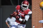 Arkansas running back Alex Collins (3) carries the ball Saturday, Sept. 14, 2013, during the first quarter of play at Razorback Stadium in Fayetteville.