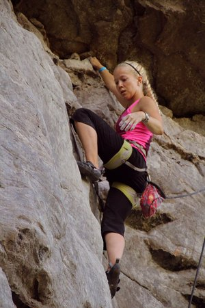 Special to the Democrat-Gazette/BOB ROBINSON