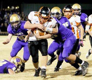 Photo by Sue Fancher 