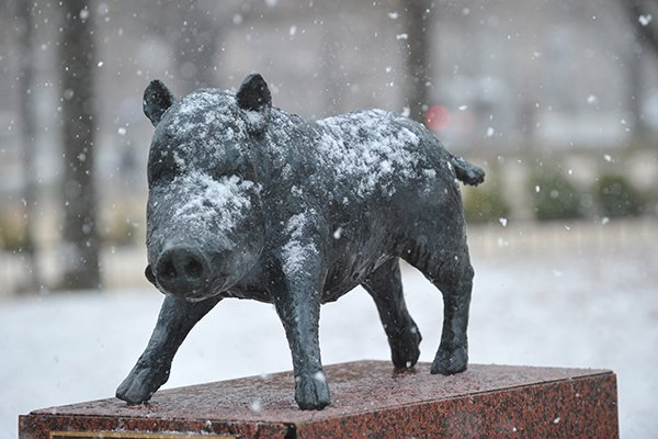 Snow covers a statue outside the University of Arkansas student union on March 21, 2013.