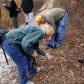 Hikers, from left, Gabriele Schafer, Irene Kainz-Markum, Annette Rowe and Earl Rowe inspect wildflow...