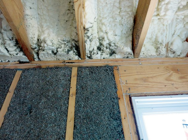 this-photo-of-the-2013-doug-rye-energy-efficient-model-home-shows-the-exterior-wall-of-cellulose-insulation-the-foam-insulation-on-the-roof-decking-and-the-caulking-around-the-top-plate-and-window-header