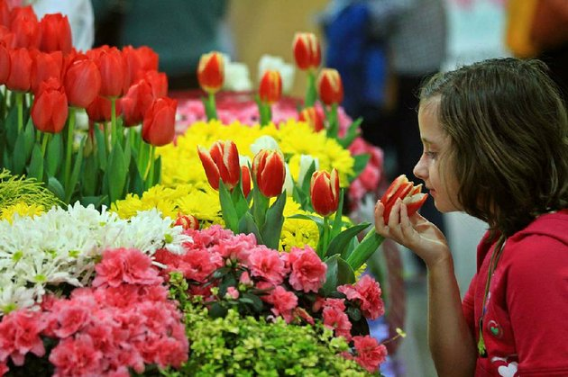 the-arkansas-flower-and-garden-show-will-be-feb-21-23-at-the-statehouse-convention-center