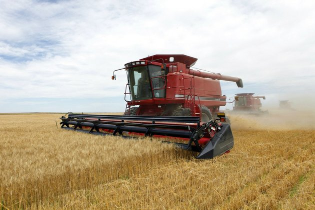 fin-this-july-9-2009-file-photo-three-combines-harvest-the-winter-wheat-on-the-cooksey-farm-near-roggen-colo