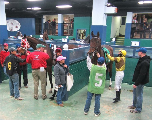 before-each-oaklawn-park-race-fans-can-watch-the-horses-being-saddled-and-mounted-in-the-paddock