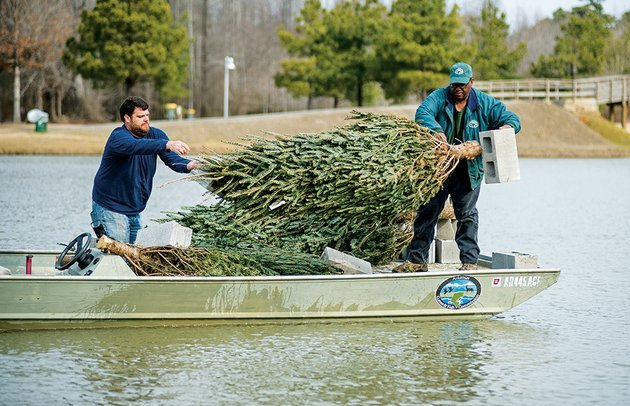 ben-batten-left-and-clint-coleman-with-the-arkansas-game-and-fish-commission-toss-christmas-trees-weighted-with-cinder-blocks-into-the-cabot-community-pond-as-part-of-a-program-for-improving-fish-habitats