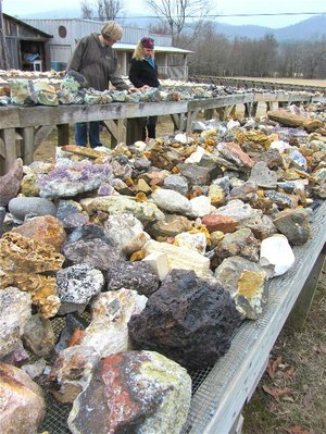 An array of crystals is displayed outdoors for buyers and browsers at Wegner's Quartz Crystal Mines & Museum near Mount Ida.