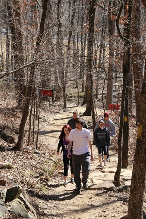 Hikers take advantage of a warm February day to hike Pinnacle Mountain State Park's trails.