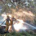 FILE PHOTO ANTHONY REYES A pair of Tontitown firefighters douse hot spots at 13730 White Oak Road in...