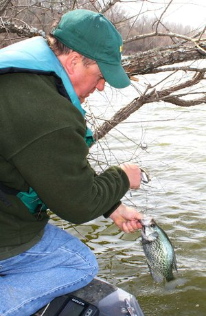 Bill Eldridge of Benton has been catching crappie like this and bigger this week with yo-yos at Lake Ouachita.