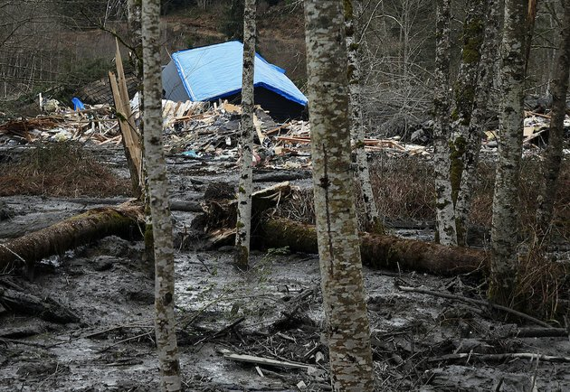 a-fatal-mudslide-brought-debris-down-the-stillaguamish-river-near-oso-wash-saturday-march-22-2014-stopping-the-flow-of-the-river-and-destroying-several-homes