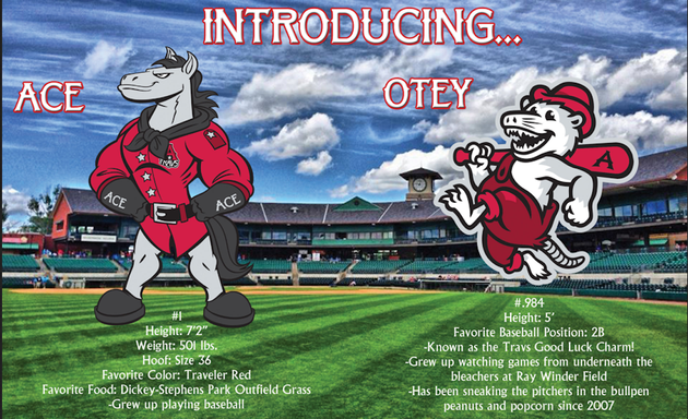 the-arkansas-travelers-unveiled-two-new-mascots-on-tuesday-afternoon-ace-the-horse-and-otey-the-swamp-possum