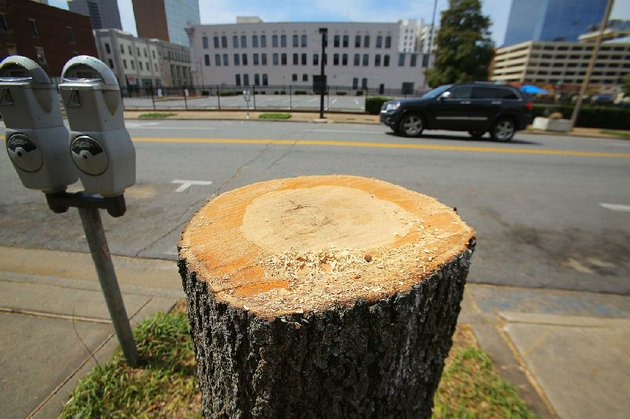 33014-arkansas-democrat-gazettestephen-b-thornton-the-stumps-of-oak-trees-remain-along-the-200-block-of-main-street-in-little-rock-sunday