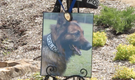 Service honors fallen Little Rock K9 officers