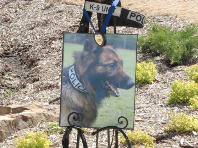a-memorial-pays-tribute-to-chewy-a-little-rock-police-department-k9-officer-who-died-last-month
