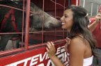 Arkansas cheerleader Carolyn Yates kisses Tusk, the University of Arkansas mascot before the NCAA college football game with Louisiana-Monroe in Little Rock, Ark., Saturday, Sept. 11, 2010. (AP Photo/David Quinn)