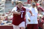 Arkansas Razorback fan Canaan Sandy scored a touchdown on a play during the Razorbacks spring NCAA college football game, Saturday, April 26, 2014, in Fayetteville, Ark. (AP Photo/Sarah Bentham)